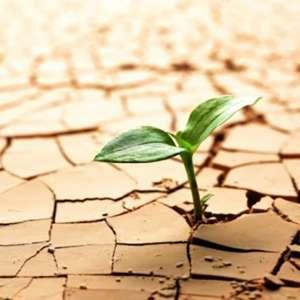 امیدواری چیست / امیدواری به زندگی /امیدواری به آینده / امیدواری در زندگی