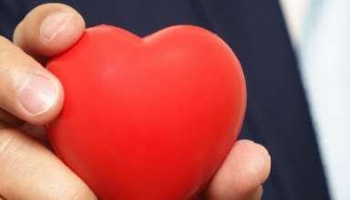 خود را جا کردن در دل دیگران را تا چه اندازه بلد هستید؟