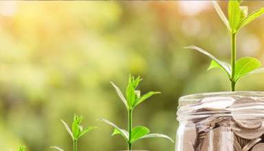 موفقیت مالی شخصی و اصول موفقیت مالی را تا چه اندازه بلدید؟