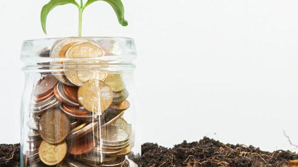 چگونه هوش مالی داشته باشیم ؟ میلیاردرشدن چه عالمی دارد؟