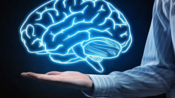 راه های افزایش ظرفیت ذهنی برای زندگی بهتر