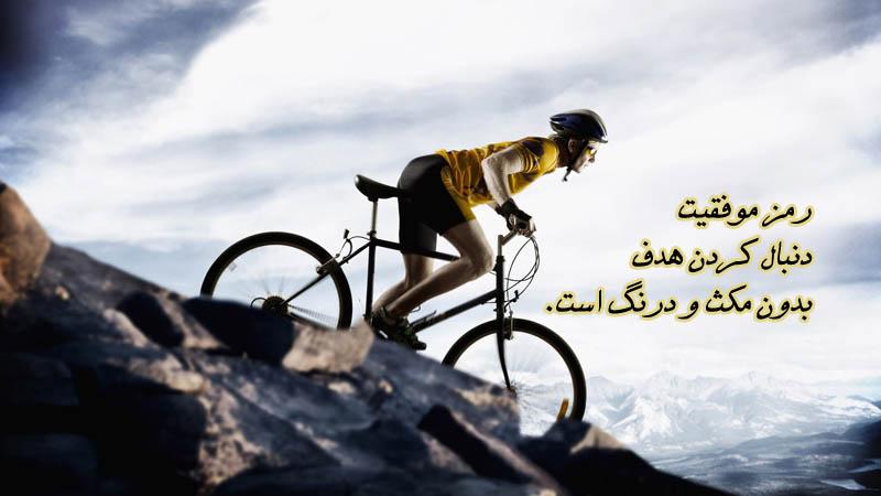 بلند شو و برنده شو -