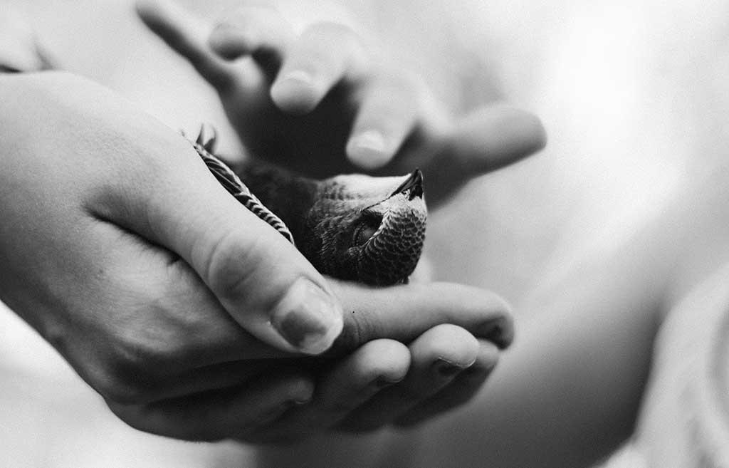 همدلی با دیگران چه تأثیری در رشد فردی خودمان دارد؟